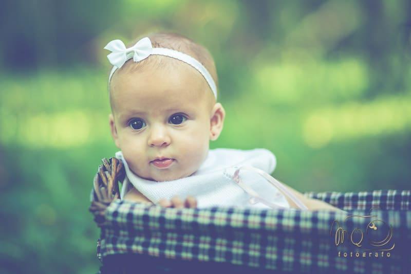 bebé con lazo blanco dentro de una cesta