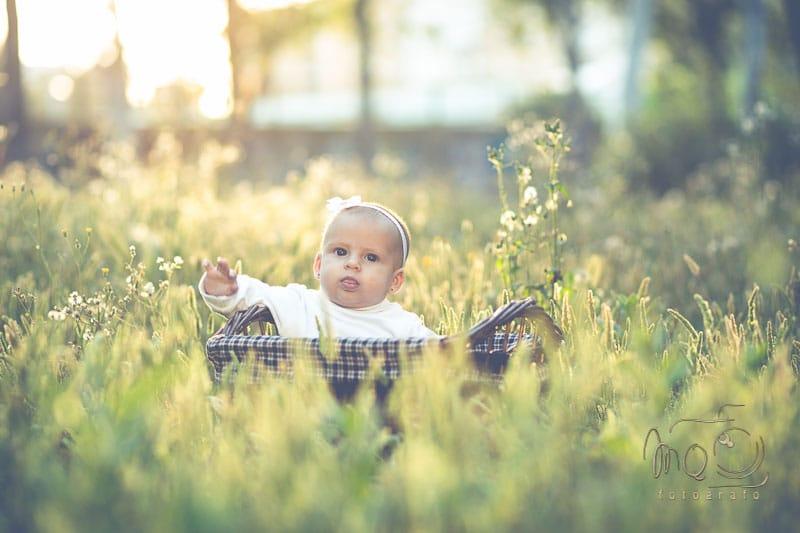 bebe entre la hierva dentro de una canasta