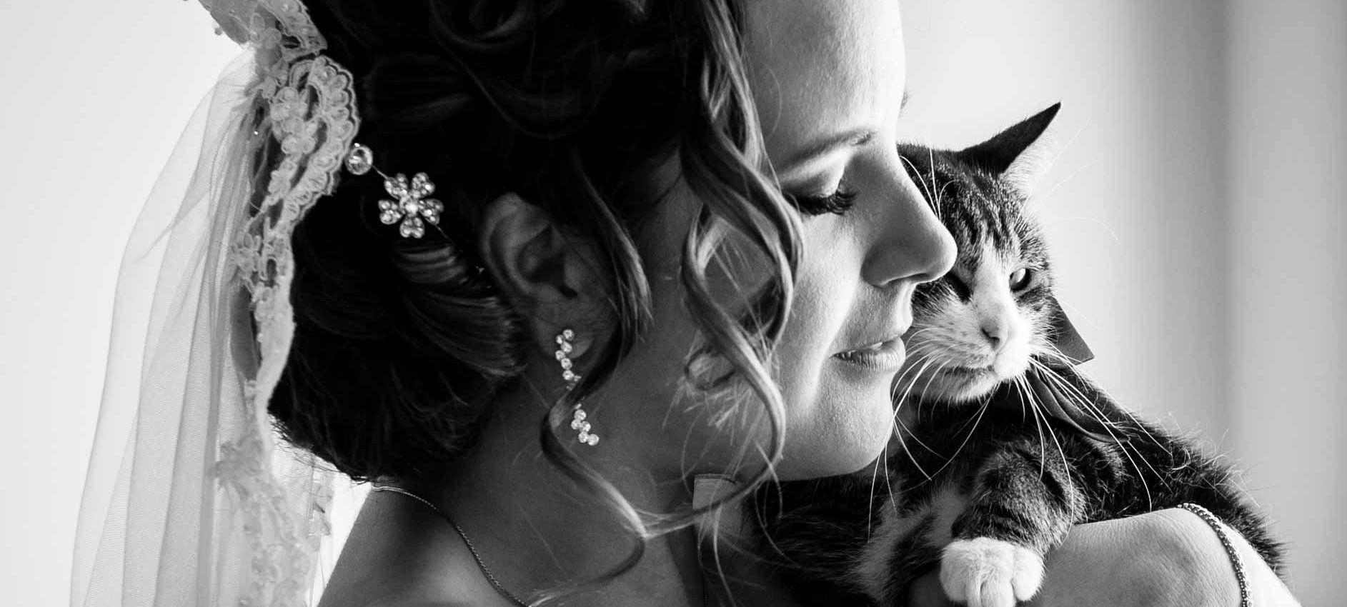 Fotografía de boda, la novia con un gato junto a la cara, mimos